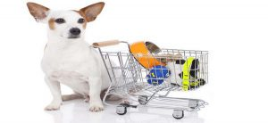 The Best Tips For Buying Online Pet Supplies
